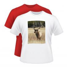 Potisk triček