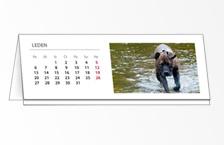 Stolní kalendář