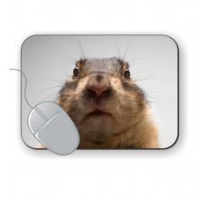 Potisk podložek pro myš